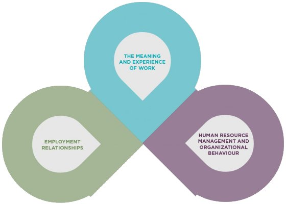 Centre for Research in Organisations and Work - Research Themes