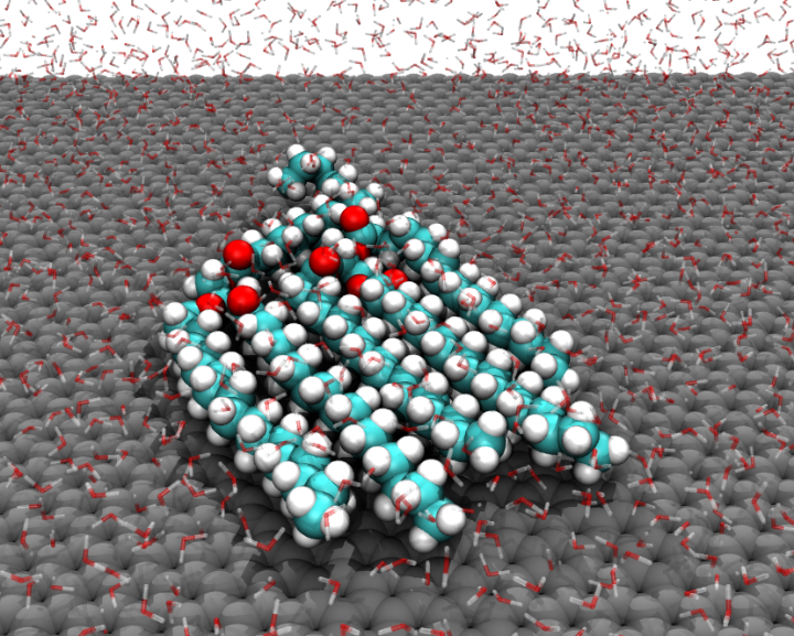 Molecular dynamics simulations of triacylglycerol lipid molecules adsorbed at the aqueous graphene interface. The hydrophobic lipid tails align with each other. The oxygen, carbon and hydrogen atoms of the lipids are coloured red, cyan and white, respectively, while the graphene surface is coloured grey. Water molecules are shown as transparent