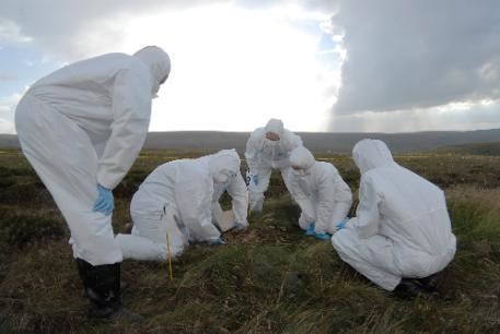 4 people dressed in white protective suits inspecting moorland ground